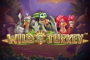 slot gratis wild turkey